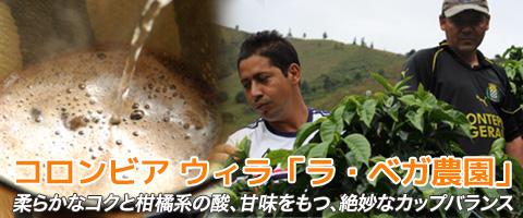 コロンビア産 ウィラ 「ラ・ベガ農園」