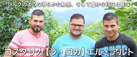 コスタリカ産 【ラ・ロカ】 「エル・アルト」コーヒー豆