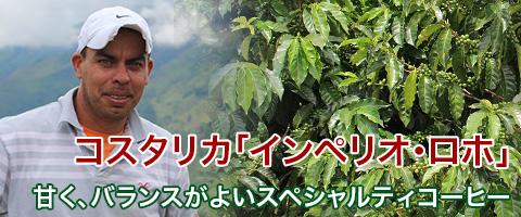 スペシャルティコーヒー コスタリカ インペリオ・ロホ コーヒー豆