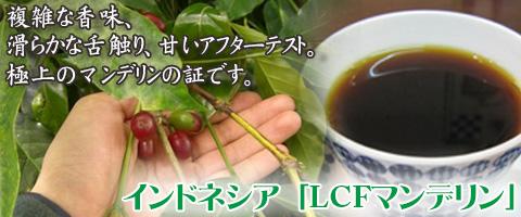 スペシャルティコーヒー インドネシア産 LCFマンデリン