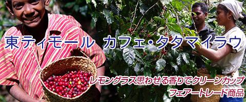 東ティモール カフェ・タタマイラウ レブドゥ レテンコーヒー豆
